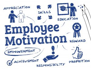 How Frequently Should An Organisation Measure Employee Morale?